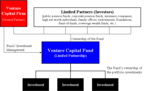 <b>Venture Capital (risikokapital)</b>