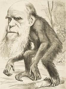 <b>Darwin sin evolusjonsteori</b>