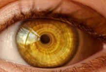 øyenfarge