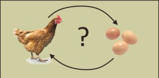 hypotese