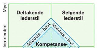 kompetanse-lederstil