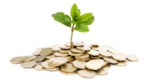 <b>Hva er økonomi og økologi, og hvilken sammenheng finnes?</b>