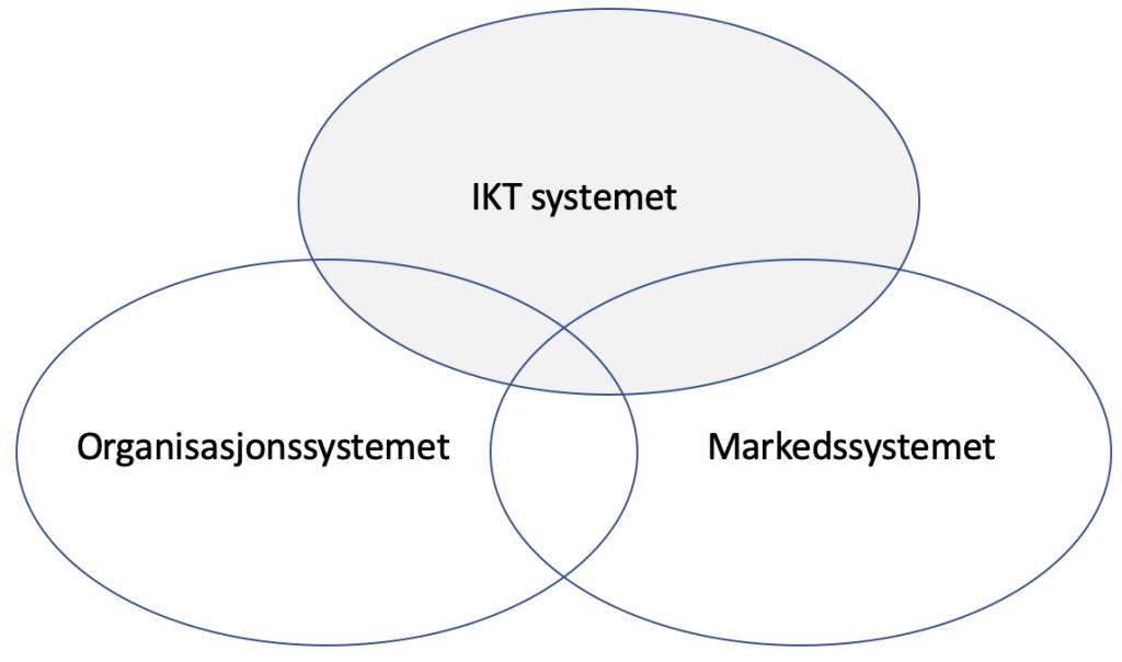organisasjon-marked-ikt-system