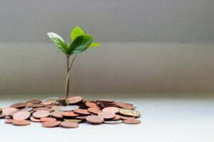 <b>Kostnad- og inntektsanalyse - en metode for å måle nettstedets lønnsomhet</b>
