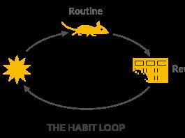 the-habit-loop