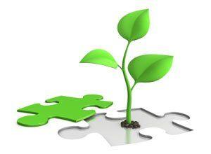 vekst-laering