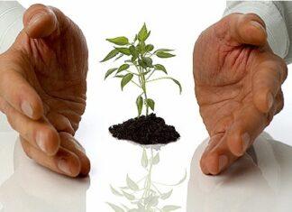 vekst-plan